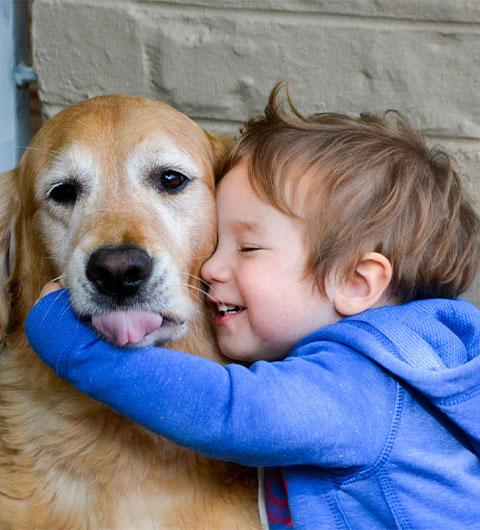 Hotels Nanaimo Bc Pet Friendly